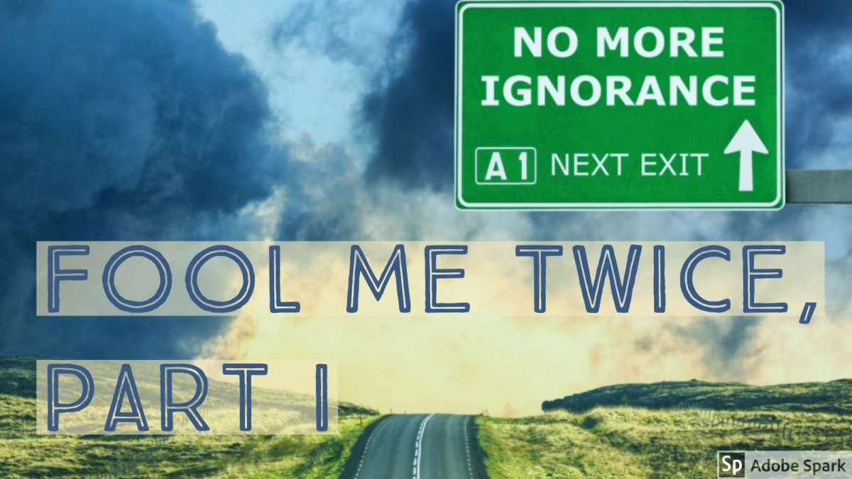 fool-me-twice-road-exit-ignorance